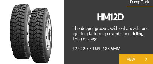 HM12D